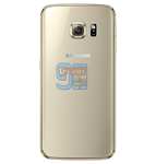 Picture of S6 Back - Gold